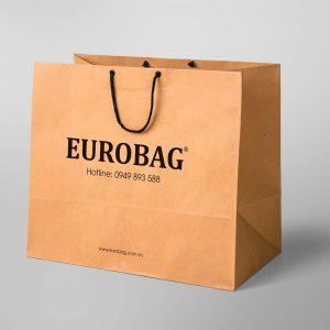 NHOM-IN-Tui-giay-eurobag2